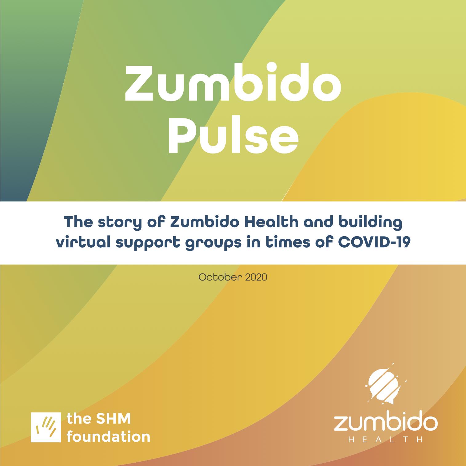 Zumbido Pulse OCT